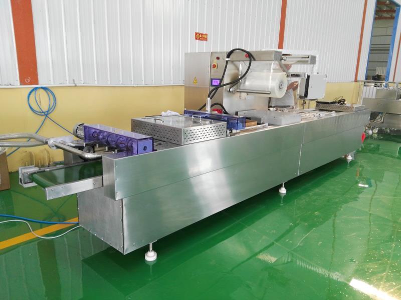 DLZ-420型全自动连续真空包zhuang机